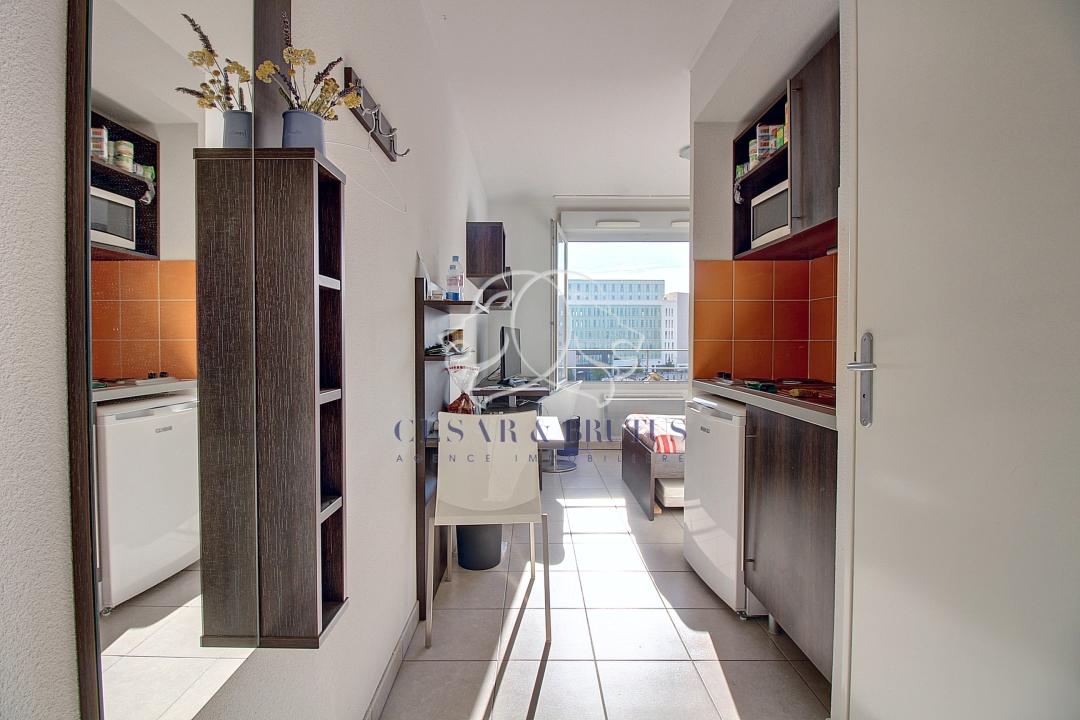 annonce vente appartement lyon 7 17 m 84 000 992740022249. Black Bedroom Furniture Sets. Home Design Ideas